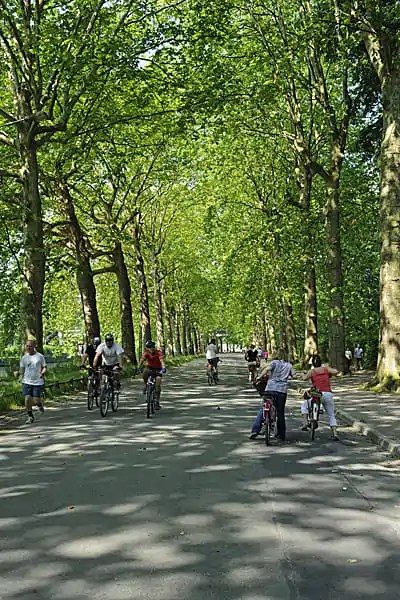 Avenue Mathias Delobel