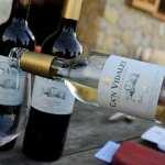 Drinking Mallorca!