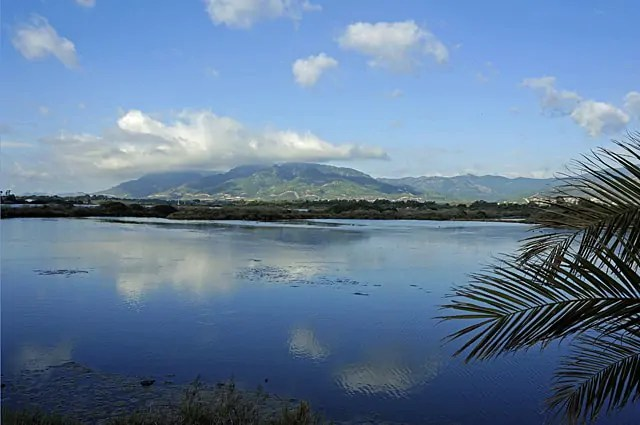 near Nora, Southern Sardinia
