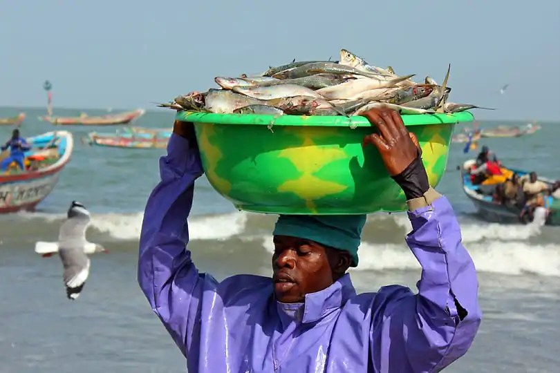 Tanji fish market, The Gambia, West Africa