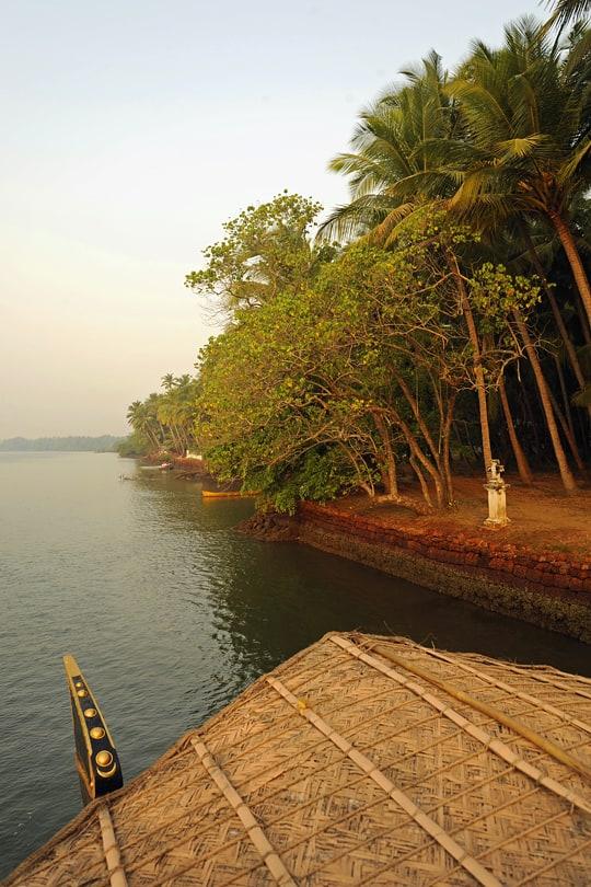 Early morningon the Chapora River, Goa