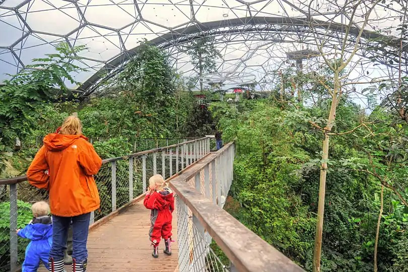 Raised canopy walk way at the Eden Project, Cornwall
