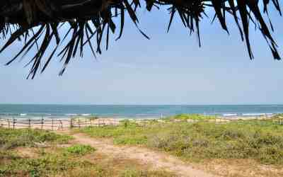 Get off the beaten path and unwind in The Gambia