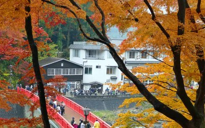 Instagramming Japan – Autumn Colours in Shoryudo