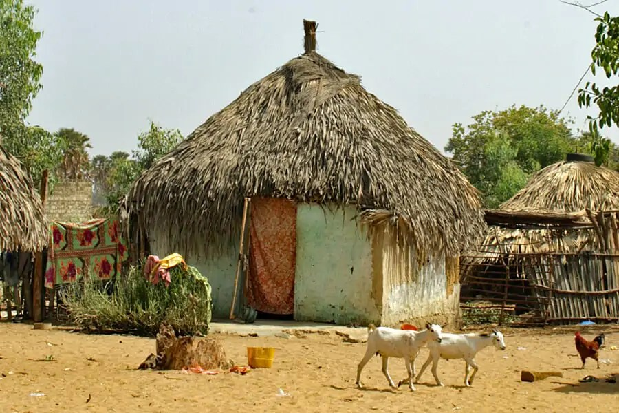 Traditional Senegalese hut with palm leaf roof
