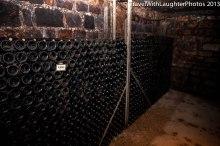 Joseph Drouhin Winery-4866