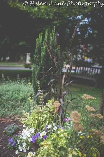Doylestown Walk July 2014-2592