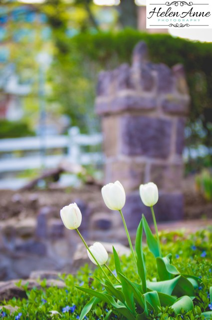 Doylestown Spring 2015-4756-40