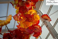 chihuly-seattle-2434-67