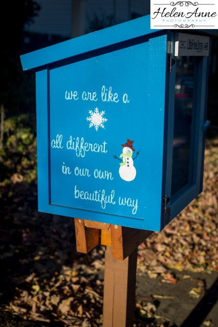 LOVE this all around Doylestown! Little Free Library.