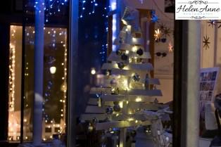 doylestown-christmas-2520