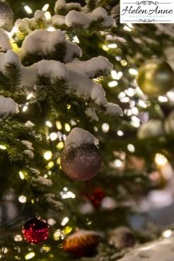 doylestown-christmas-2534