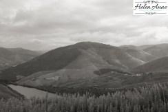 Quinta Carvalhas-0964