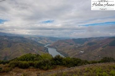 Quinta Carvalhas-0985