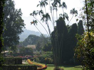 SRILANKA Trip