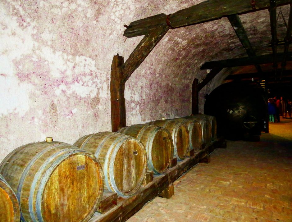 Full day wine Tour to Kakheti from Tbilisi