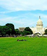 Washington D.C. Guide
