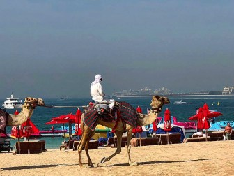 Activities at JBR Beach Dubai – Most Popular Hangout of Dubai