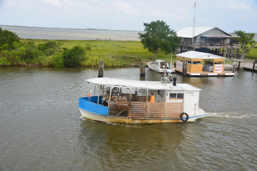 20 Cocodrie A 67 - Hospitalité cajun en Louisiane