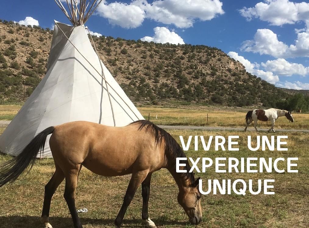 Séjour ranch au Colorado