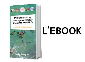 Ebook voyage USA