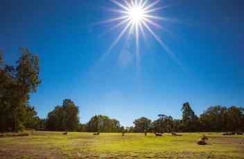 Travel With Meraki- Taronga Western Plains Zoo Dubbo Australia