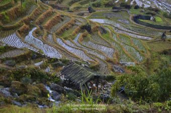 Hiking the Dragon's Backbone in Longsheng