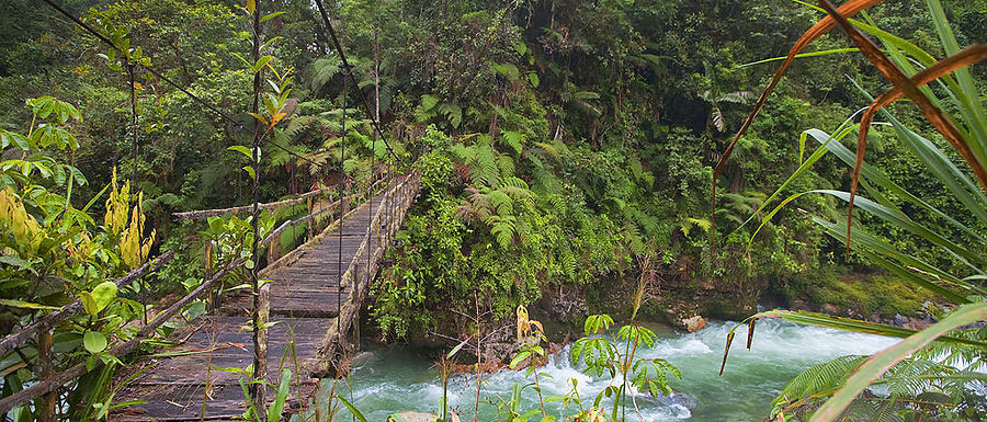Hiking through the jungle in Ecuador • Travel with Mei and Kerstin