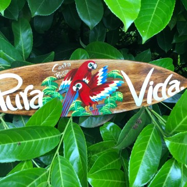 Dos and Don'ts for Family Travel to Costa Rica