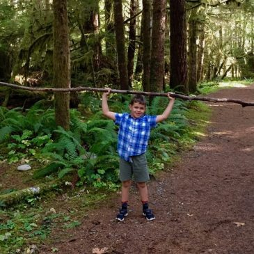 The Ultimate Guide to Olympic National Park with Kids