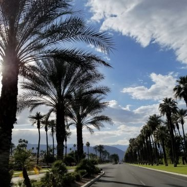 Affordable Family Vacations on the West Coast