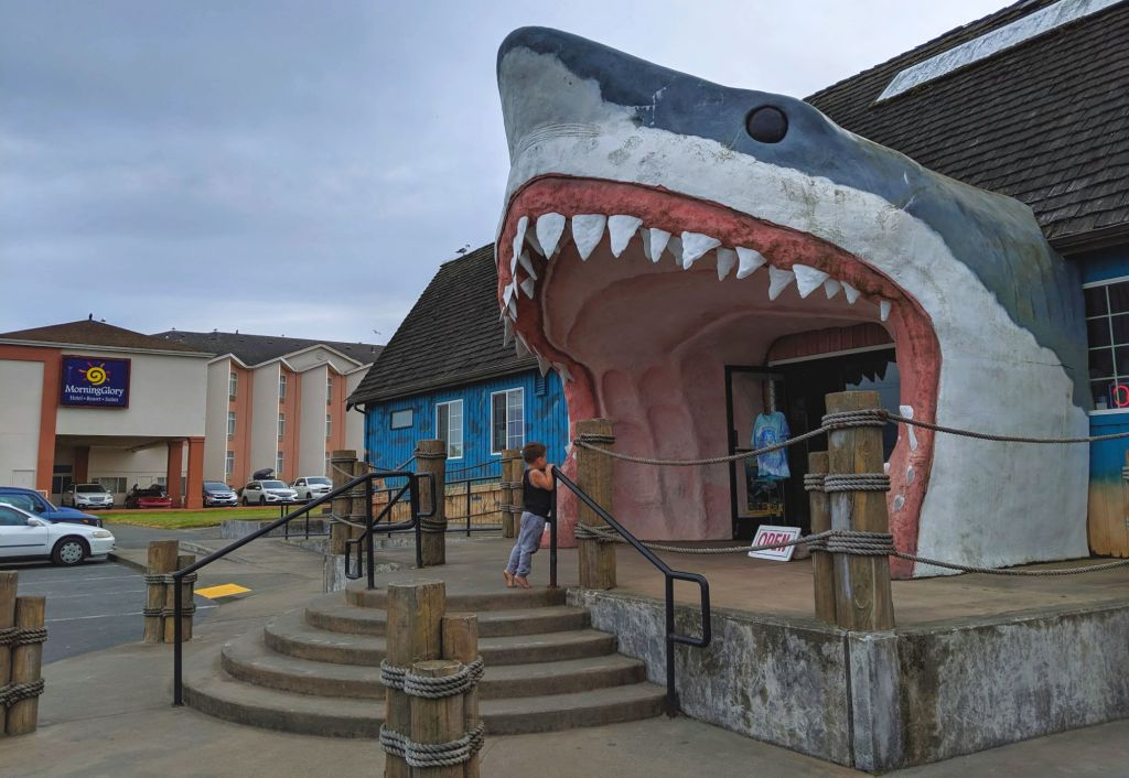 Ocean Shores Sharky's