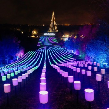 Luminaria: See Christmas Lights at Utah's Thanksgiving Point