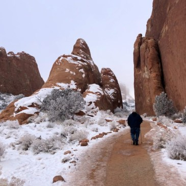 Arches National Park: What to Do, Where to Go and What to Know
