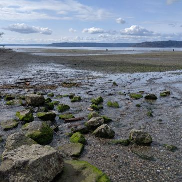 Exploring Dash Point State Park near Tacoma and Seattle