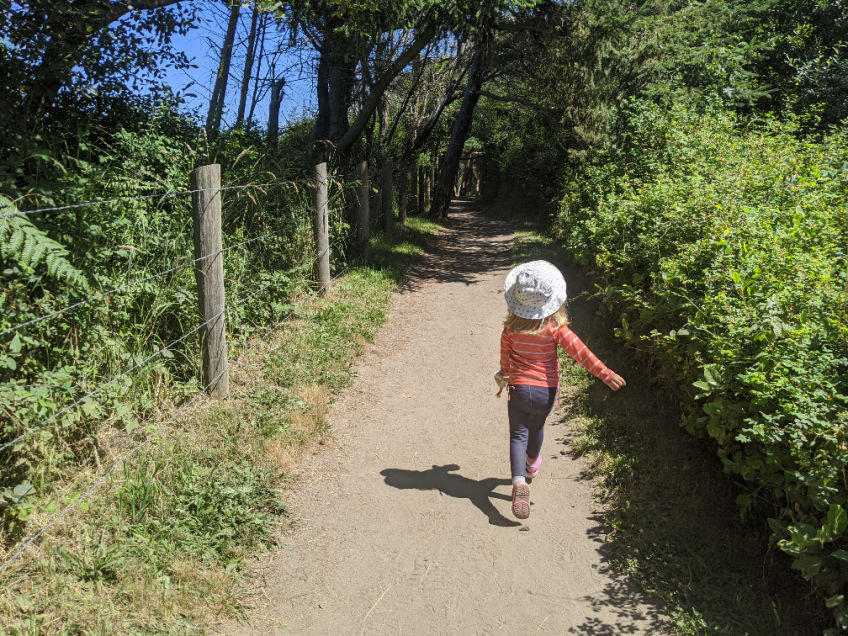 dungeness spit trail