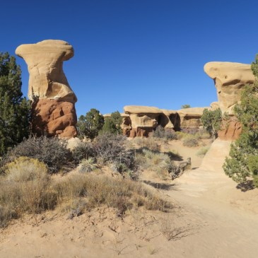What to Do at Grand Staircase-Escalante National Monument