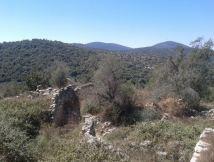 שרידי הכפר בירעם