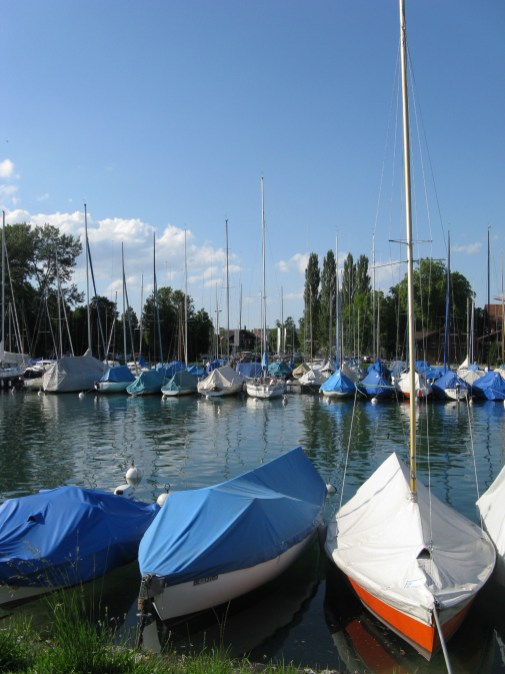 אגם טון, שוויץ