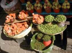 השוק בסן קריסטובל