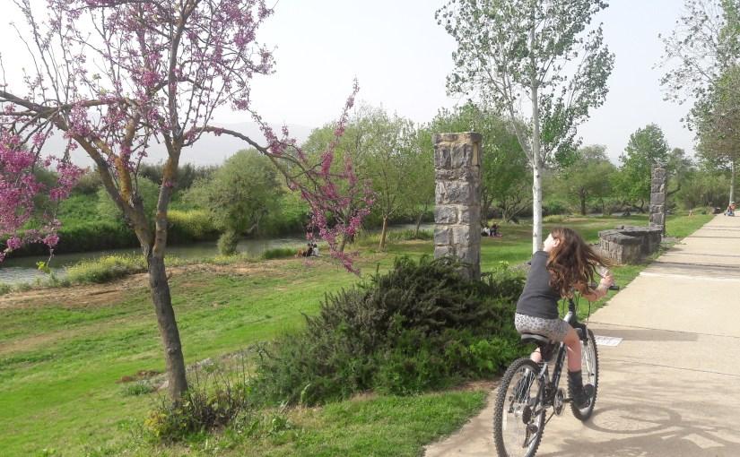 טיול אופניים לאורך טיילת הירדן והבניאס התחתון
