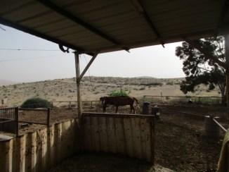 חוות נחל בוקר