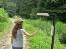 זהירות דובים בעמק קיסו