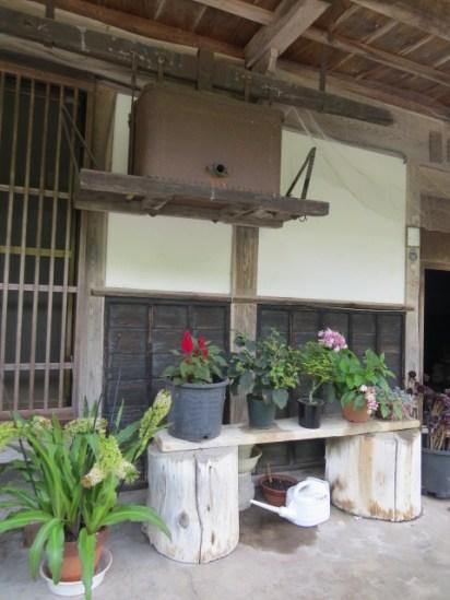 בעמק קיסו בין מגומה לצומאגו