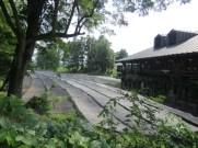 חוות הווסאבי
