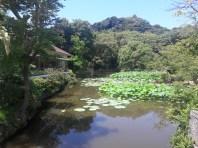 מקדש האצ'ימנגו בקמאקורה