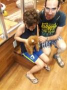 חנות חיות בטוקיו