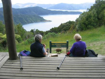 טיול בזיו זילנד