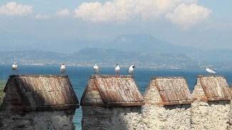המצודה בסירמיונה