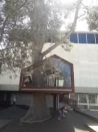 אגף הנוער במוזיאון ישראל